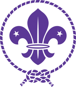 World Scout